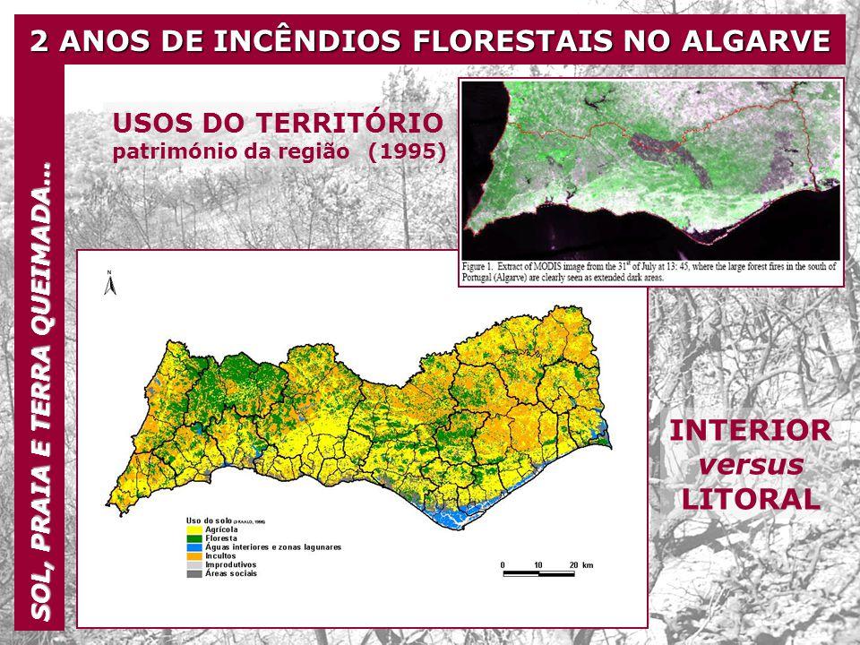 2 ANOS DE INCÊNDIOS FLORESTAIS NO ALGARVE SOL, PRAIA E TERRA QUEIMADA… Verões de 2003 e 2004 18% da área do Algarve atingida pelo fogo 38% da área florestal do Algarve destruída