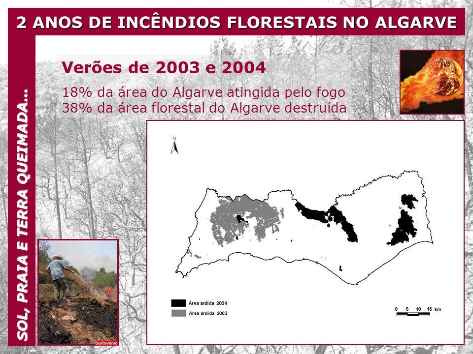 2 ANOS DE INCÊNDIOS FLORESTAIS NO ALGARVE SOL, PRAIA E TERRA QUEIMADA… Verões de 2003 e 2004 18% da área do Algarve atingida pelo fogo 38% da área flo
