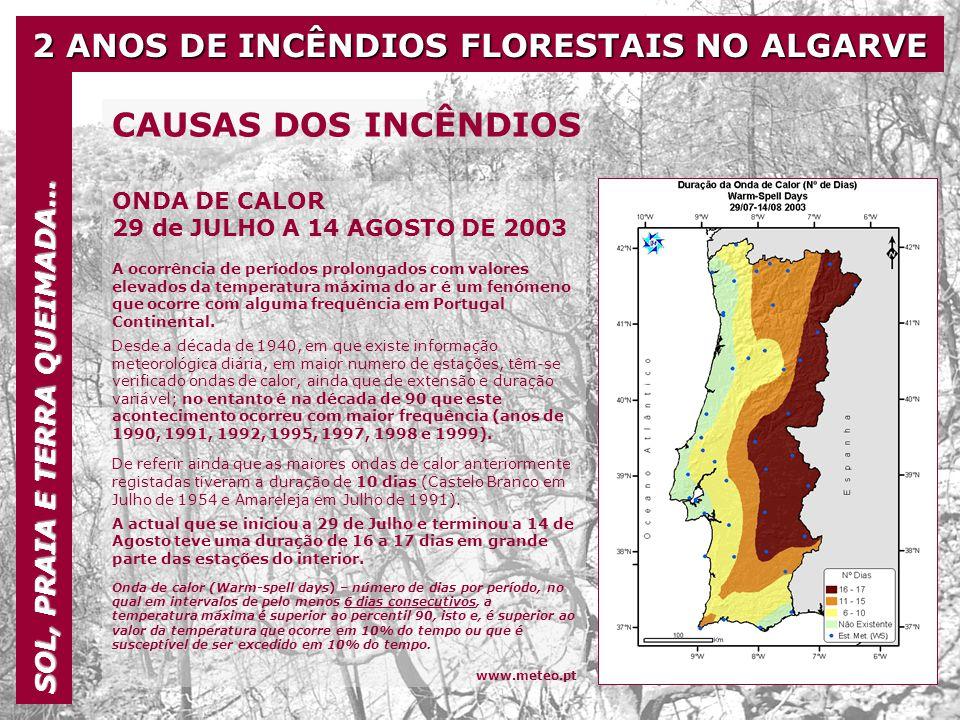2 ANOS DE INCÊNDIOS FLORESTAIS NO ALGARVE SOL, PRAIA E TERRA QUEIMADA… http://reports.eea.eu.int/climate_report_2_2004/en CAUSAS DOS INCÊNDIOS