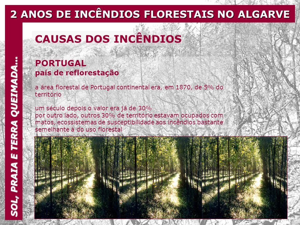 2 ANOS DE INCÊNDIOS FLORESTAIS NO ALGARVE SOL, PRAIA E TERRA QUEIMADA… CAUSAS DOS INCÊNDIOS PORTUGAL país de reflorestação a área florestal de Portuga