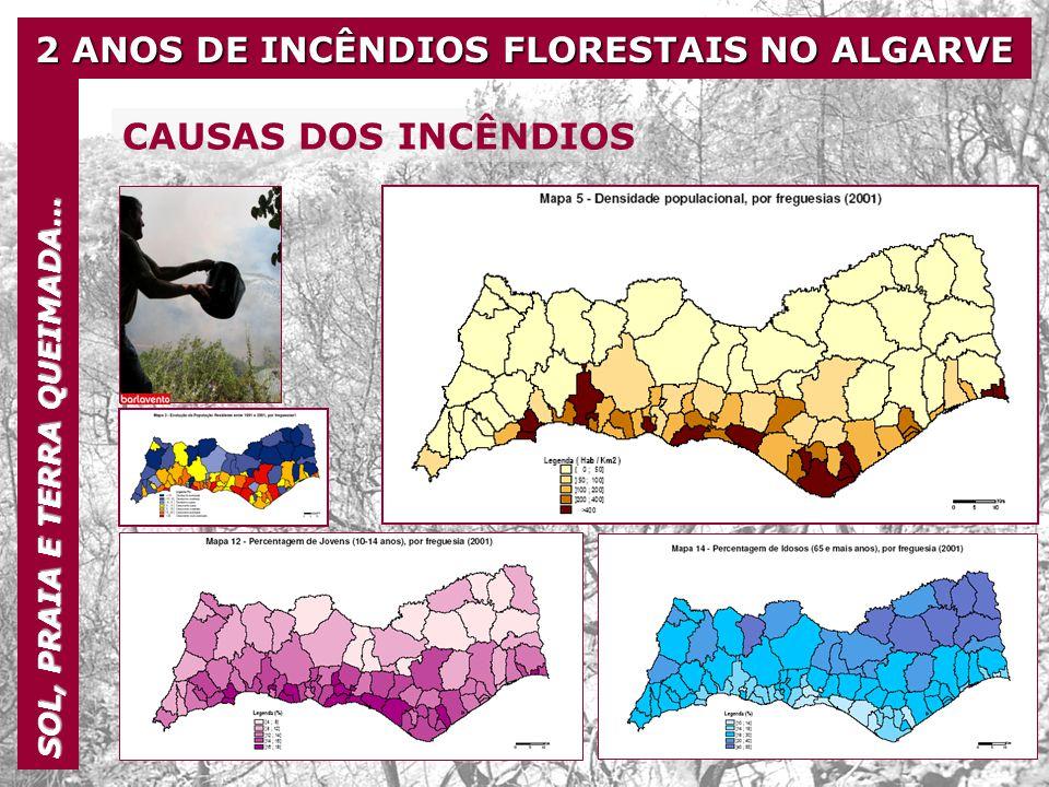 2 ANOS DE INCÊNDIOS FLORESTAIS NO ALGARVE SOL, PRAIA E TERRA QUEIMADA… CAUSAS DOS INCÊNDIOS Particularidades da região norte-mediterrânica condições climatéricas semi-áridas afectando grandes áreas, secas periódicas, grande variabilidade pluviométrica e chuvadas repentinas e de grande intensidade solos pobres e altamente erosionáveis, propensos à formação de crostas superficiais relevo acidentado, com declives acentuados e paisagens muito diversificadas grandes perdas no coberto vegetal devido a incêndios florestais frequentes crise na agricultura tradicional associada ao abandono da terra e deterioração das estruturas de protecção do solo e de conservação da água exploração não sustentável dos recursos hídricos, causadora de prejuízos ambientais graves, neles se incluindo a poluição química, a salinização e o esgotamento dos aquíferos concentração da actividade económica no litoral, como resultado do crescimento urbano, da actividade industrial, do turismo e da agricultura de regadio