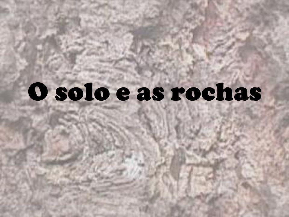 O solo e as rochas