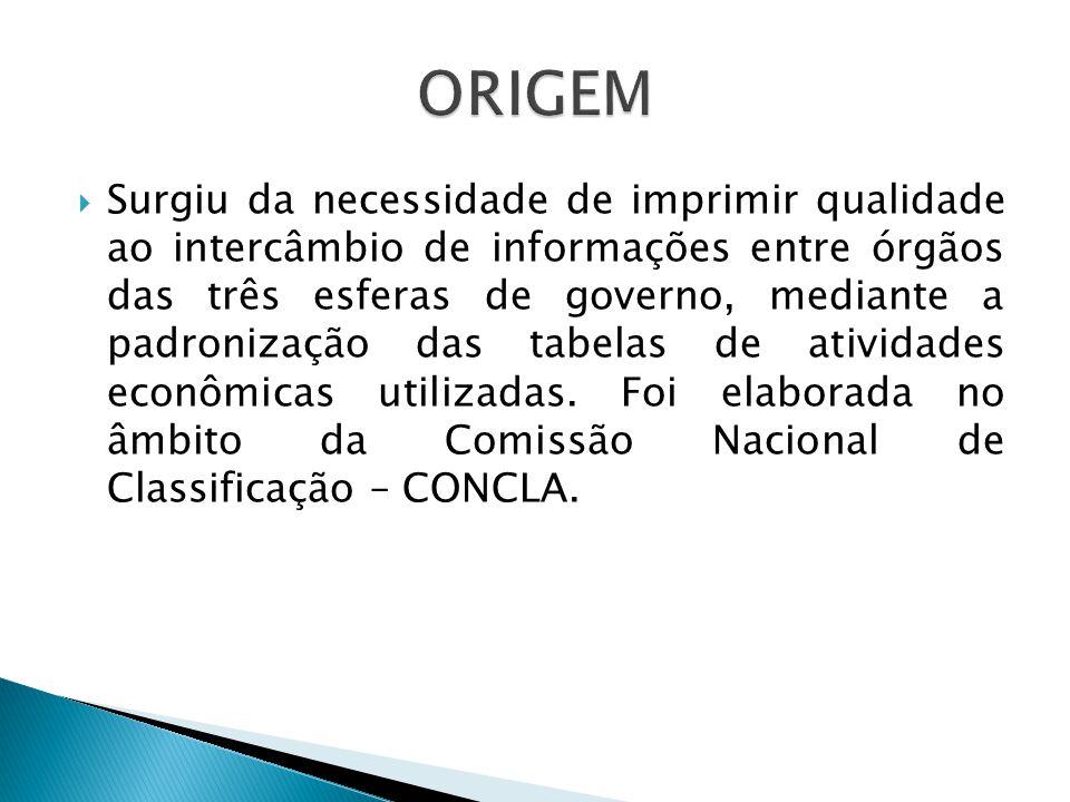 Surgiu da necessidade de imprimir qualidade ao intercâmbio de informações entre órgãos das três esferas de governo, mediante a padronização das tabelas de atividades econômicas utilizadas.