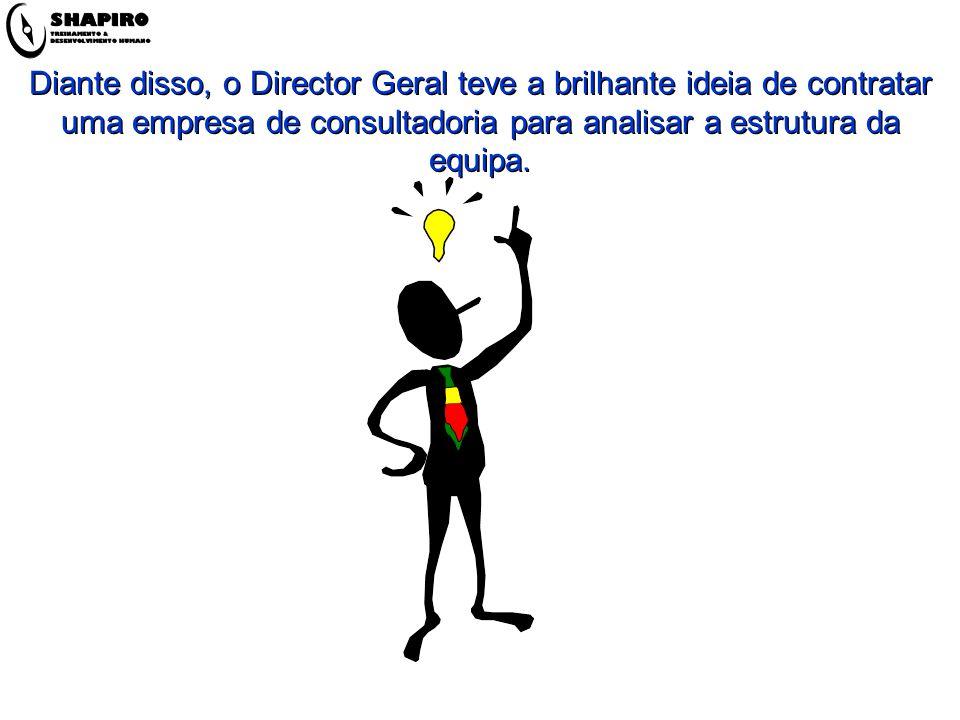 Diante disso, o Director Geral teve a brilhante ideia de contratar uma empresa de consultadoria para analisar a estrutura da equipa.