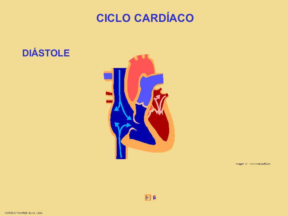 DIÁSTOLE CICLO CARDÍACO Imagem in www.innerbody.com HORÁCIO TAVARES SILVA - 2004