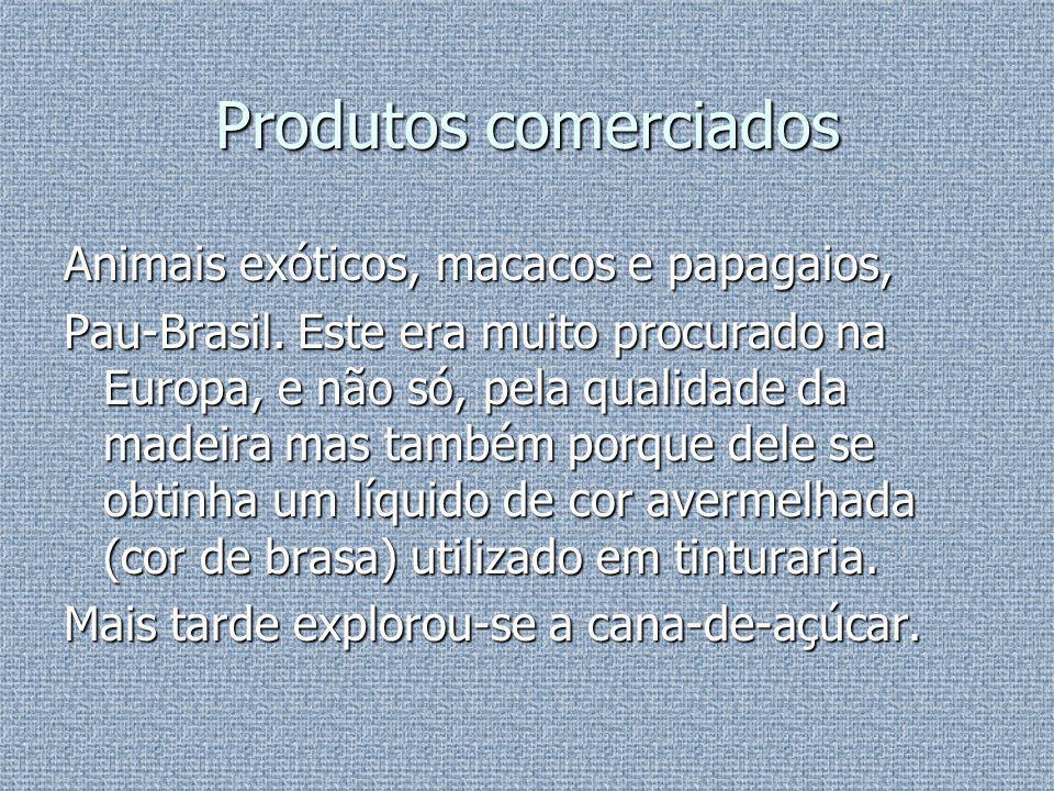 Colonização Intensificou-se a exploração do Pau-Brasil e iniciou-se o cultivo da cana-de-açúcar.