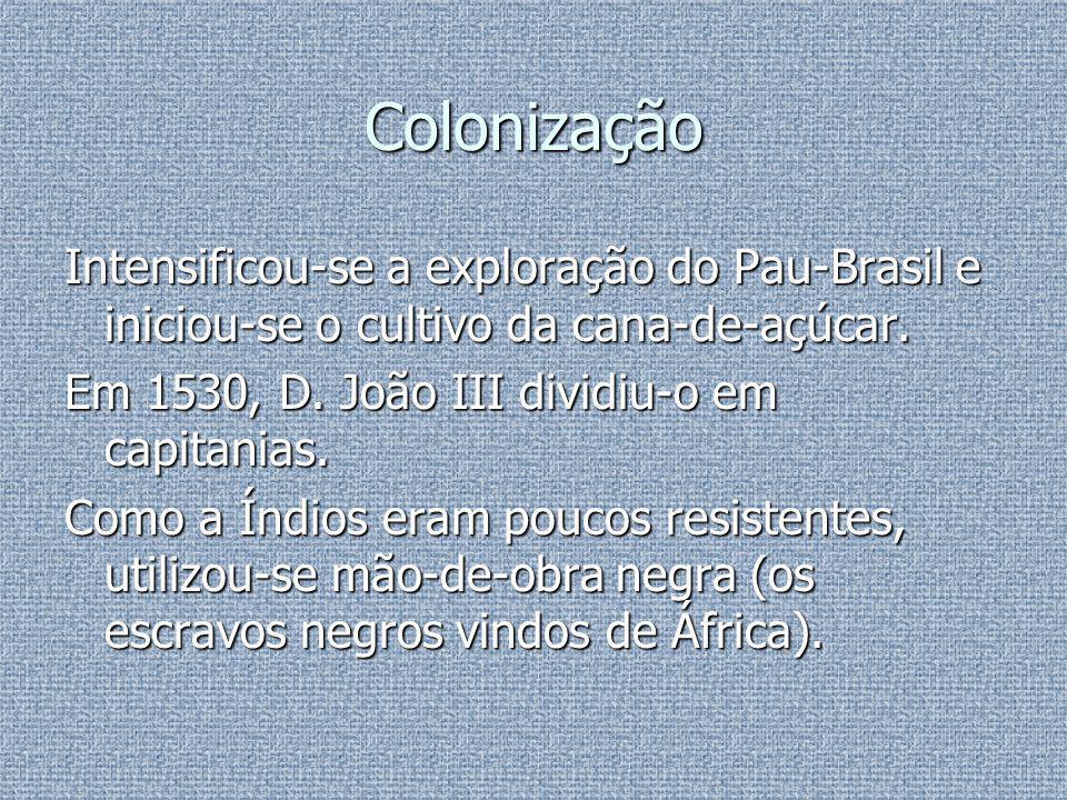 Missionação A protecção e a evangelização dos Índios começou com a chegada dos primeiros Jesuítas, dirigidos pelo pobre Manuel da Nóbrega.