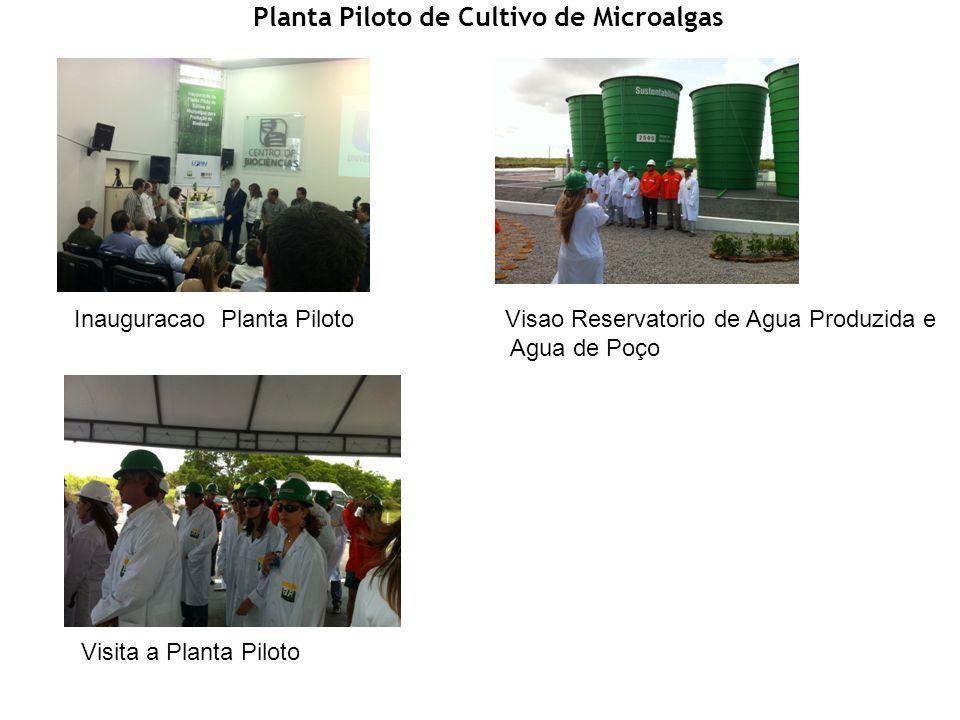 Planta Piloto de Cultivo de Microalgas Inauguracao Planta Piloto Visita a Planta Piloto Visao Reservatorio de Agua Produzida e Agua de Poço