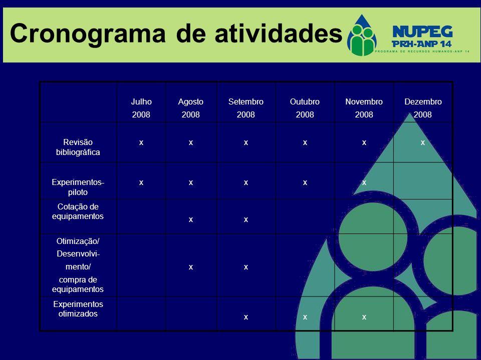 Cronograma de atividades Julho 2008 Agosto 2008 Setembro 2008 Outubro 2008 Novembro 2008 Dezembro 2008 Revisão bibliográfica xxxxxx Experimentos- pilo