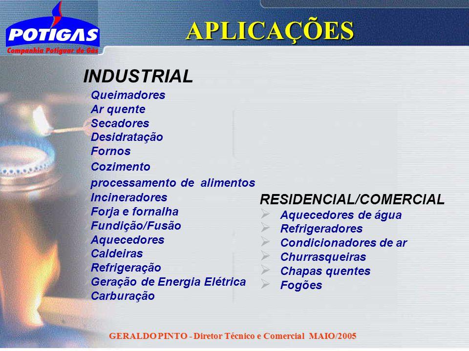 GERALDO PINTO - Diretor Técnico e Comercial MAIO/2005APLICAÇÕES INDUSTRIAL Queimadores Ar quente Secadores Desidratação Fornos Cozimento processamento