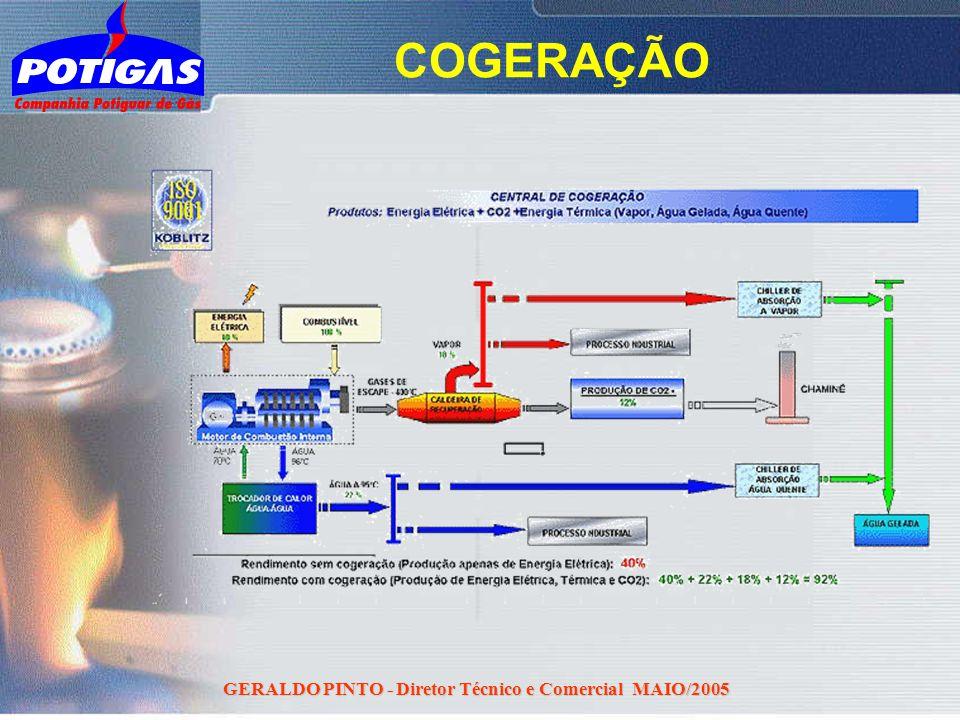 GERALDO PINTO - Diretor Técnico e Comercial MAIO/2005 COGERAÇÃO