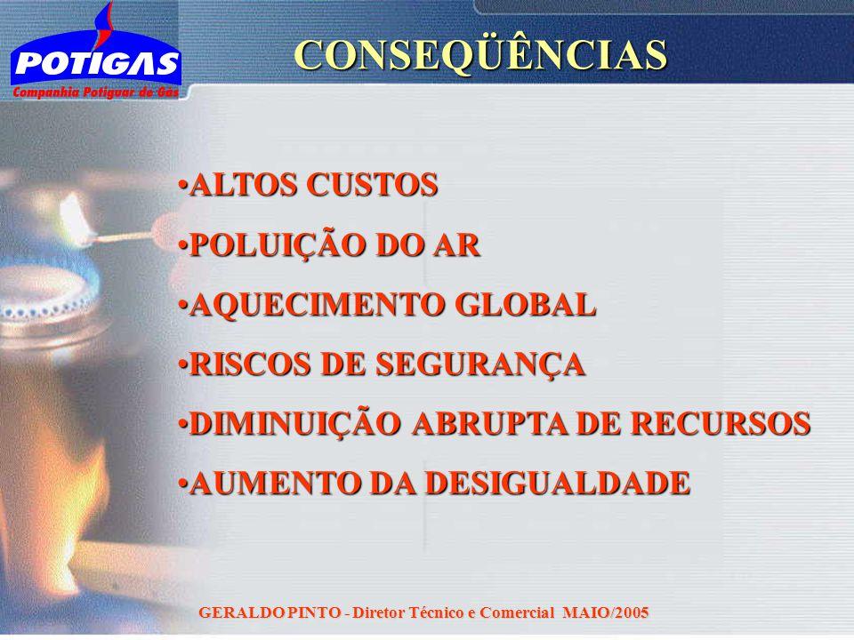 GERALDO PINTO - Diretor Técnico e Comercial MAIO/2005CONSEQÜÊNCIAS ALTOS CUSTOSALTOS CUSTOS POLUIÇÃO DO ARPOLUIÇÃO DO AR AQUECIMENTO GLOBALAQUECIMENTO