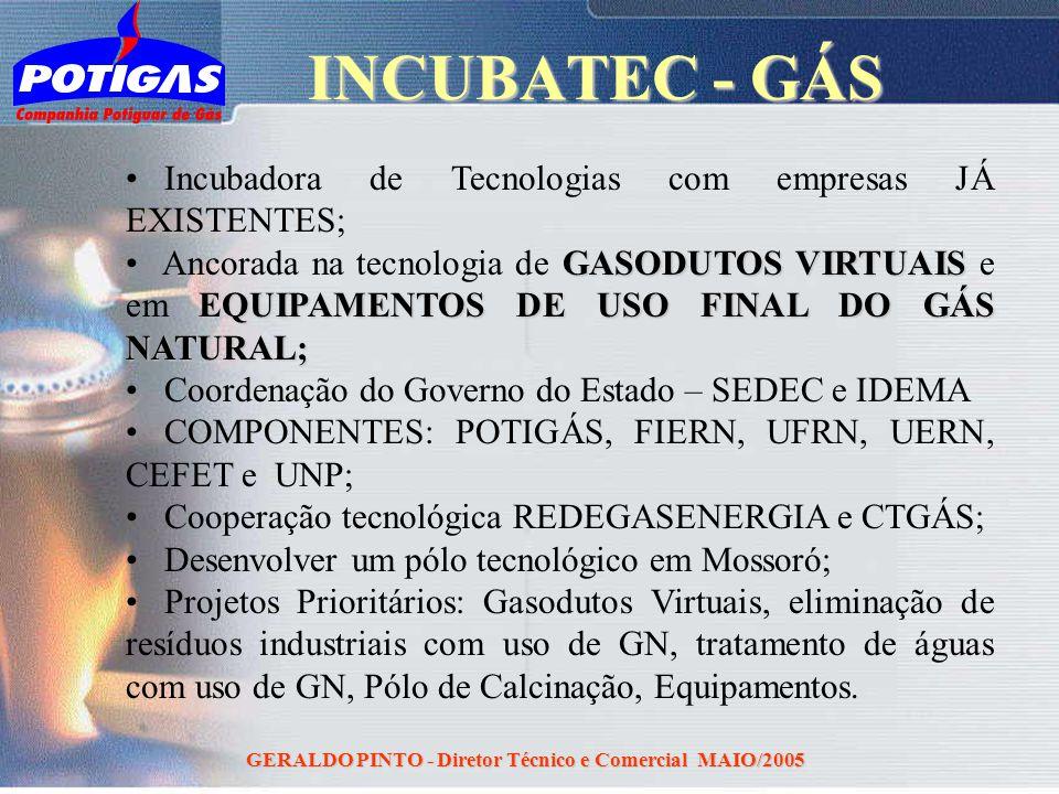 GERALDO PINTO - Diretor Técnico e Comercial MAIO/2005 Incubadora de Tecnologias com empresas JÁ EXISTENTES; GASODUTOS VIRTUAIS EQUIPAMENTOS DE USO FIN
