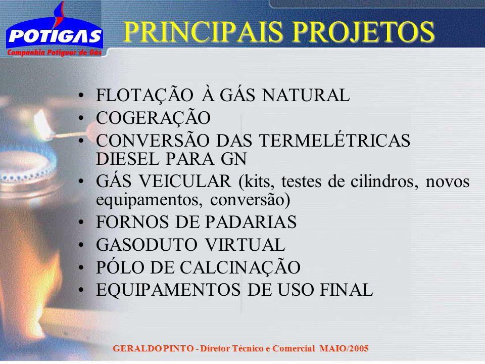 GERALDO PINTO - Diretor Técnico e Comercial MAIO/2005 PRINCIPAIS PROJETOS FLOTAÇÃO À GÁS NATURAL COGERAÇÃO CONVERSÃO DAS TERMELÉTRICAS DIESEL PARA GN