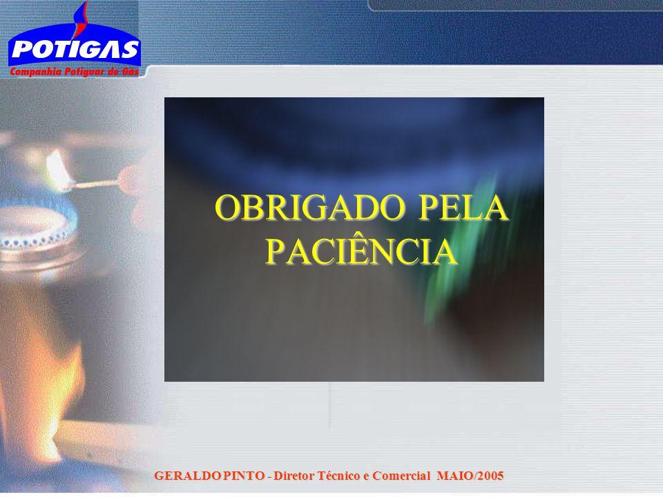 GERALDO PINTO - Diretor Técnico e Comercial MAIO/2005 OBRIGADO PELA PACIÊNCIA