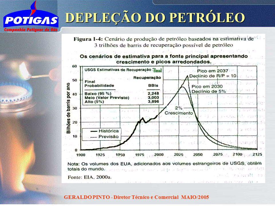 GERALDO PINTO - Diretor Técnico e Comercial MAIO/2005 DEPLEÇÃO DO PETRÓLEO final