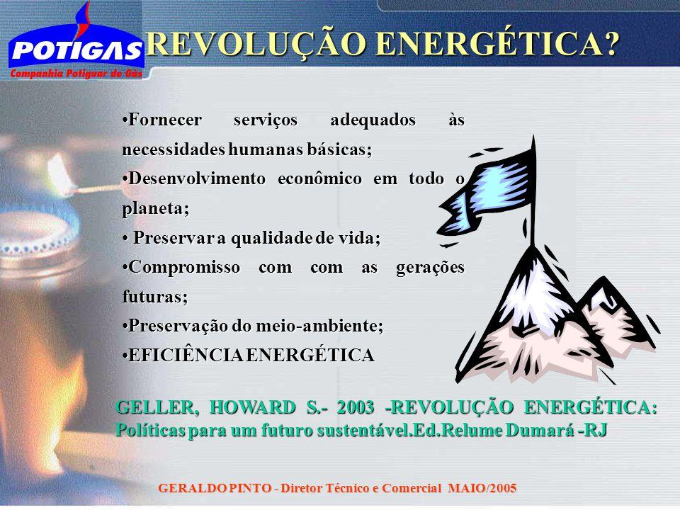 GERALDO PINTO - Diretor Técnico e Comercial MAIO/2005 REVOLUÇÃO ENERGÉTICA? GELLER, HOWARD S.- 2003 -REVOLUÇÃO ENERGÉTICA: Políticas para um futuro su