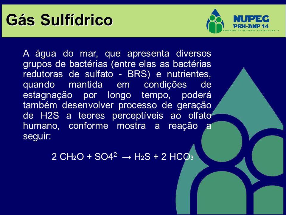 Gás Sulfídrico A água do mar, que apresenta diversos grupos de bactérias (entre elas as bactérias redutoras de sulfato - BRS) e nutrientes, quando man
