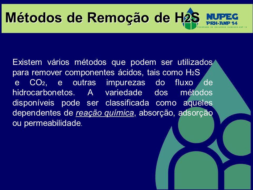 Métodos de Remoção de H 2 S Existem vários métodos que podem ser utilizados para remover componentes ácidos, tais como H 2 S e CO 2, e outras impureza