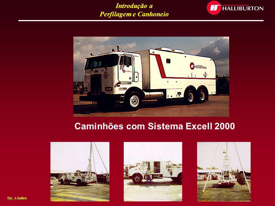 Introdução a Perfilagem e Canhoneio By: J.Salles Skids Excell 2000