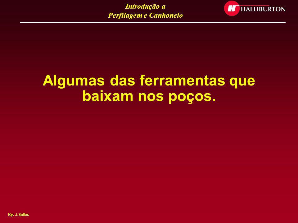 Introdução a Perfilagem e Canhoneio By: J.Salles Caminhões com Sistema Excell 2000