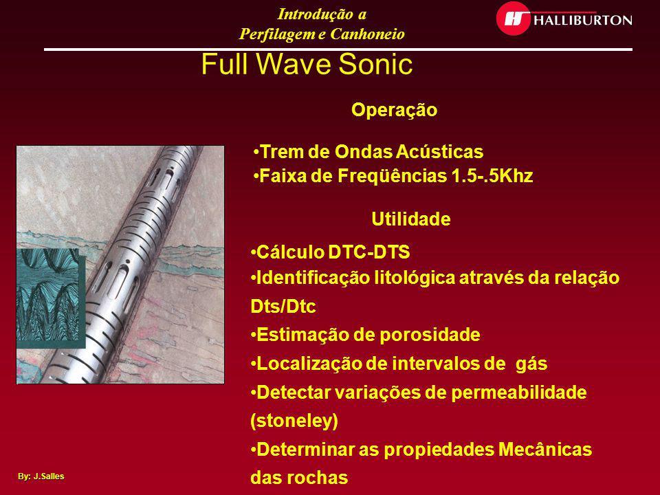 Introdução a Perfilagem e Canhoneio By: J.Salles Ferramenta de amostragem lateral Rotary Coring Tool