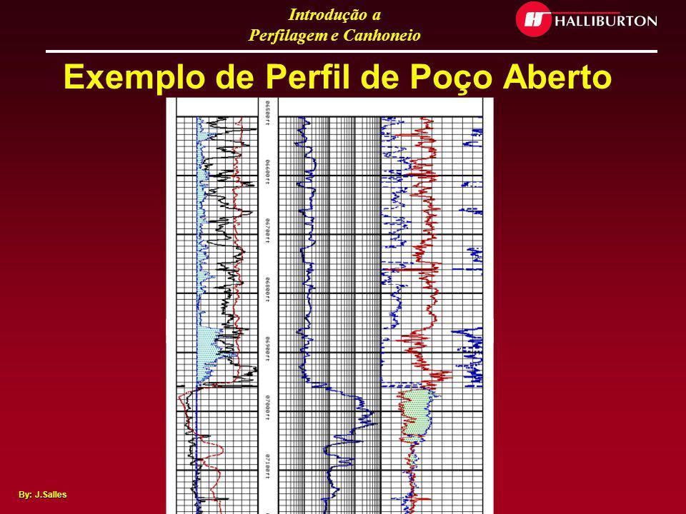 Introdução a Perfilagem e Canhoneio By: J.Salles Objetivo dos Perfis O objetivo primordial dos perfis elétricos é LOCALIZAR, AVALIAR e QUANTIFICAR os