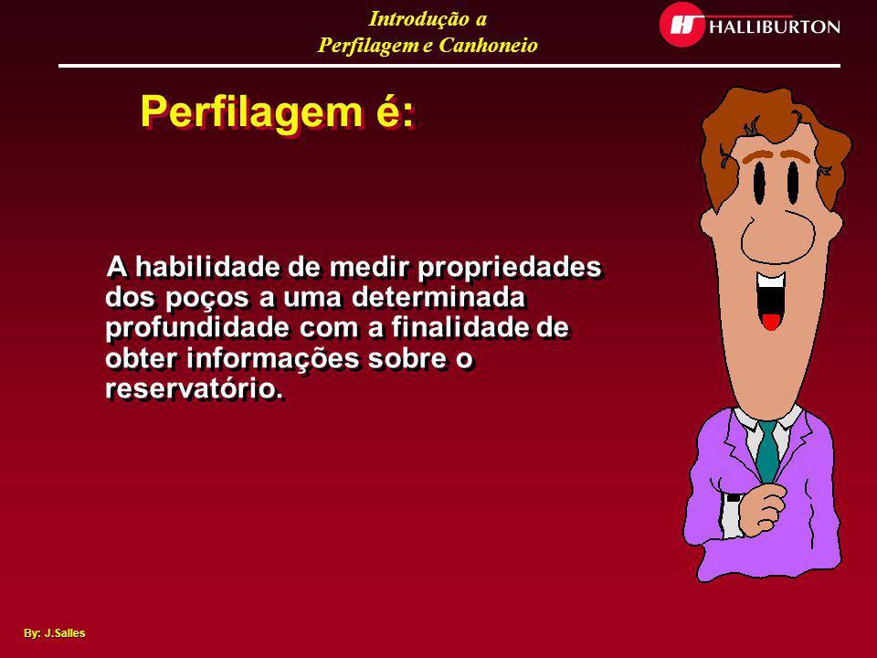Introdução a Perfilagem e Canhoneio By: J.Salles O que é Perfilagem ? ? ? ? ?