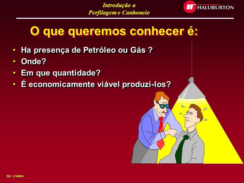 Introdução a Perfilagem e Canhoneio By: J.Salles O que queremos conhecer sobre o reservatório?