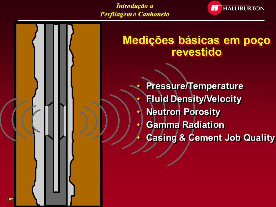 Introdução a Perfilagem e Canhoneio By: J.Salles Medidas básicas de poço aberto Resistividade Radiação Gama Sonic Travel Time Porosidade com Neutron D