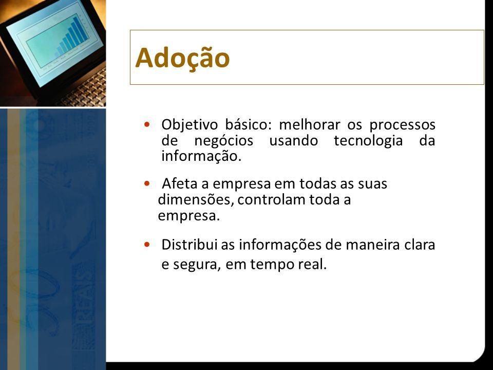 Adoção Objetivo básico: melhorar os processos de negócios usando tecnologia da informação. Afeta a empresa em todas as suas dimensões, controlam toda