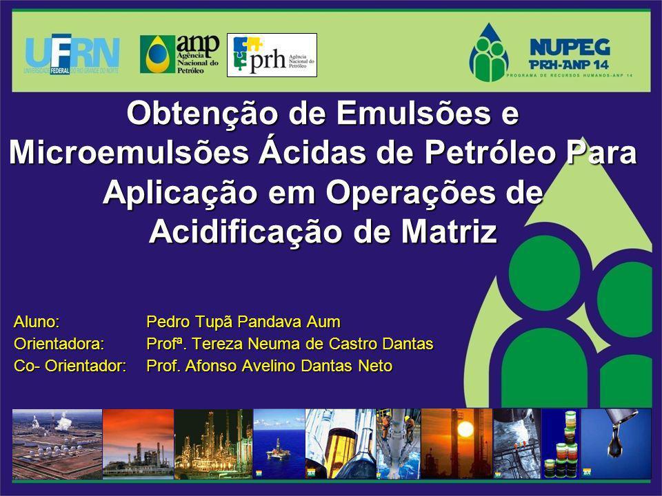 Obtenção de Emulsões e Microemulsões Ácidas de Petróleo Para Aplicação em Operações de Acidificação de Matriz Aluno: Pedro Tupã Pandava Aum Orientador