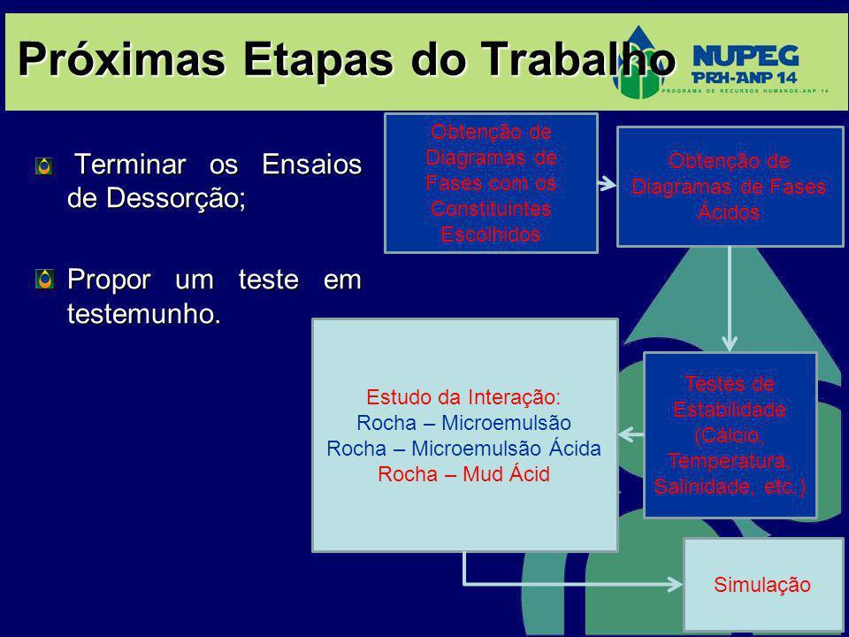 Próximas Etapas do Trabalho Terminar os Ensaios de Dessorção; Terminar os Ensaios de Dessorção; Propor um teste em testemunho. Obtenção de Diagramas d