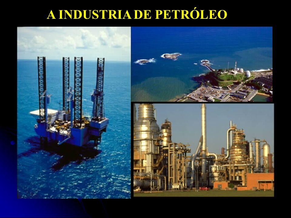 ANP – BID 07 Blocos Concedidos: 251 dos 1.134 blocos exploratórios, e 16 das 17 áreas com acumulações marginais.