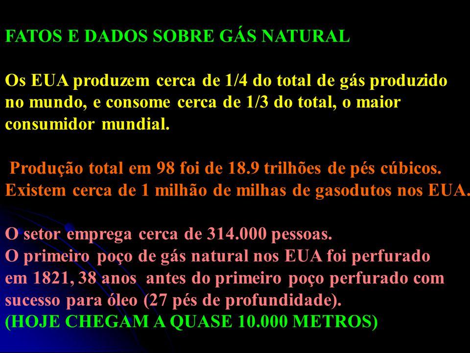 FATOS E DADOS SOBRE GÁS NATURAL Os EUA produzem cerca de 1/4 do total de gás produzido no mundo, e consome cerca de 1/3 do total, o maior consumidor m