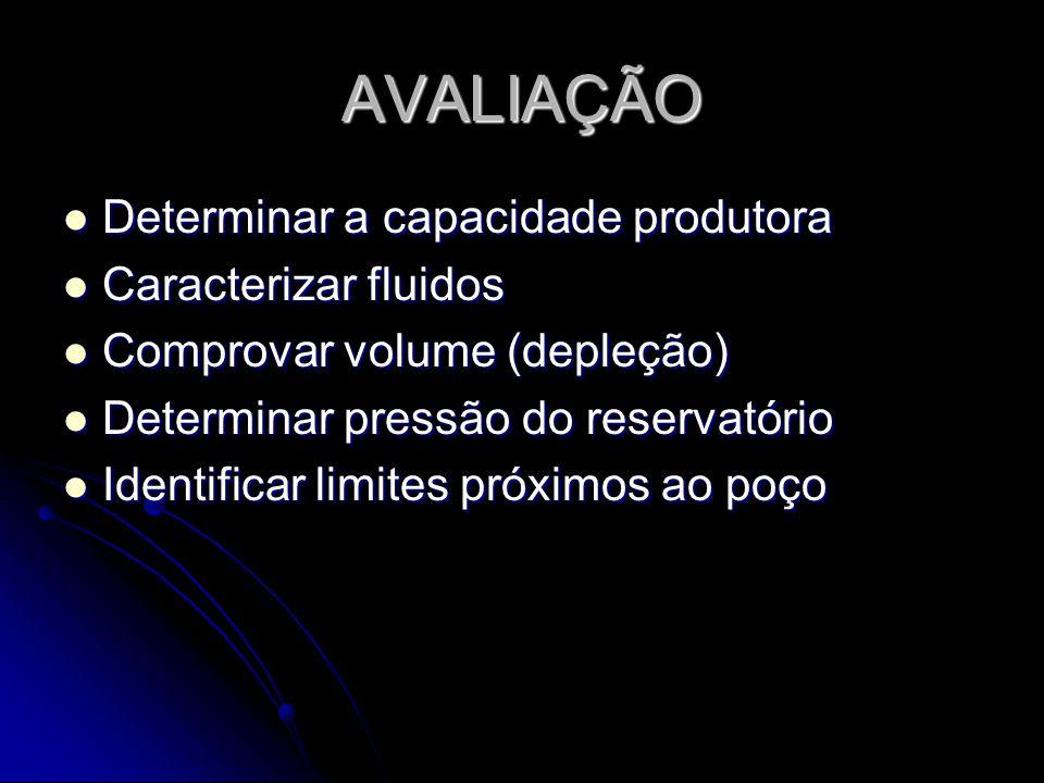 AVALIAÇÃO Determinar a capacidade produtora Determinar a capacidade produtora Caracterizar fluidos Caracterizar fluidos Comprovar volume (depleção) Co
