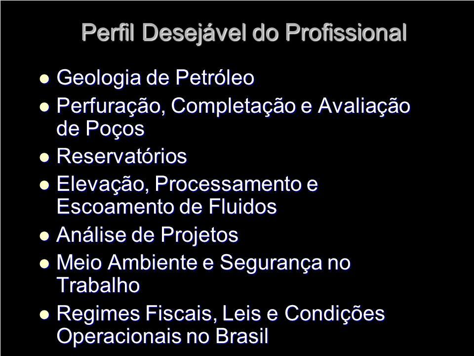 Perfil Desejável do Profissional Geologia de Petróleo Geologia de Petróleo Perfuração, Completação e Avaliação de Poços Perfuração, Completação e Aval