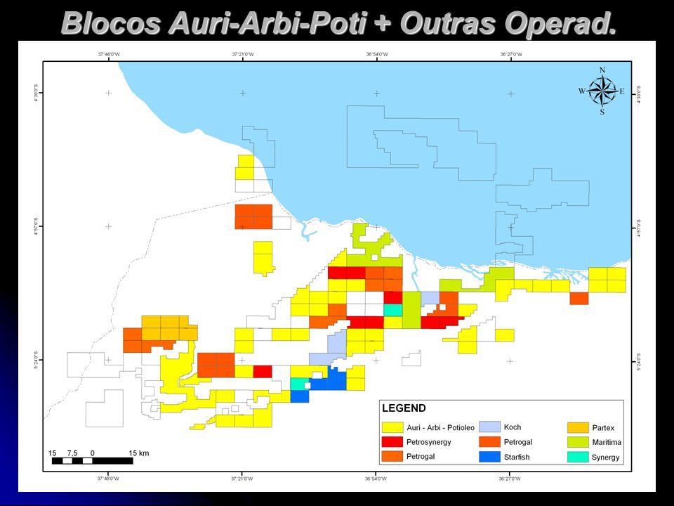Blocos Auri-Arbi-Poti e Petrobras-Outras