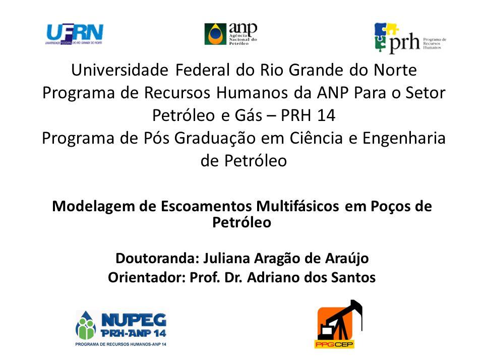Universidade Federal do Rio Grande do Norte Programa de Recursos Humanos da ANP Para o Setor Petróleo e Gás – PRH 14 Programa de Pós Graduação em Ciên