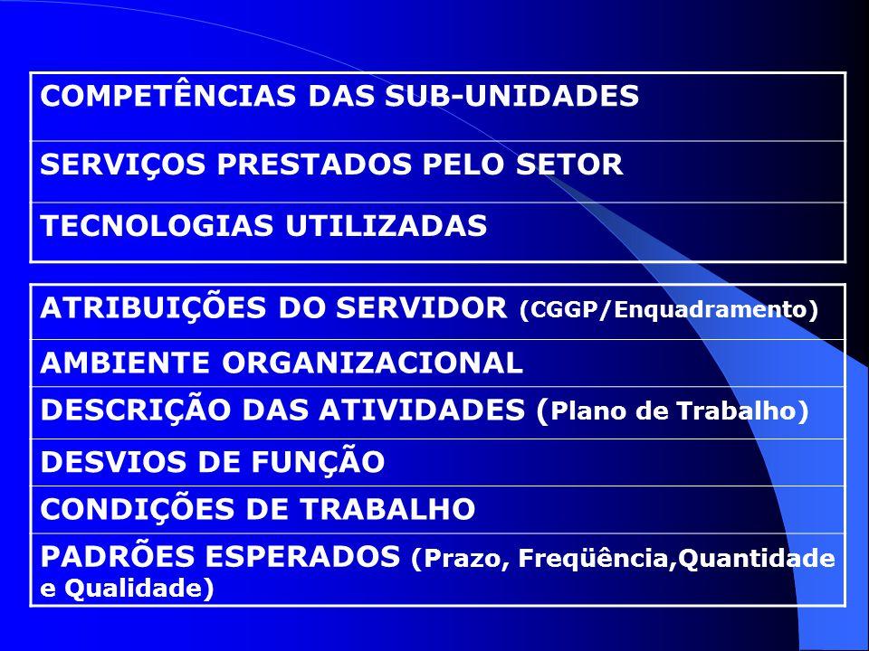 COMPETÊNCIAS DAS SUB-UNIDADES SERVIÇOS PRESTADOS PELO SETOR TECNOLOGIAS UTILIZADAS ATRIBUIÇÕES DO SERVIDOR (CGGP/Enquadramento) AMBIENTE ORGANIZACIONA