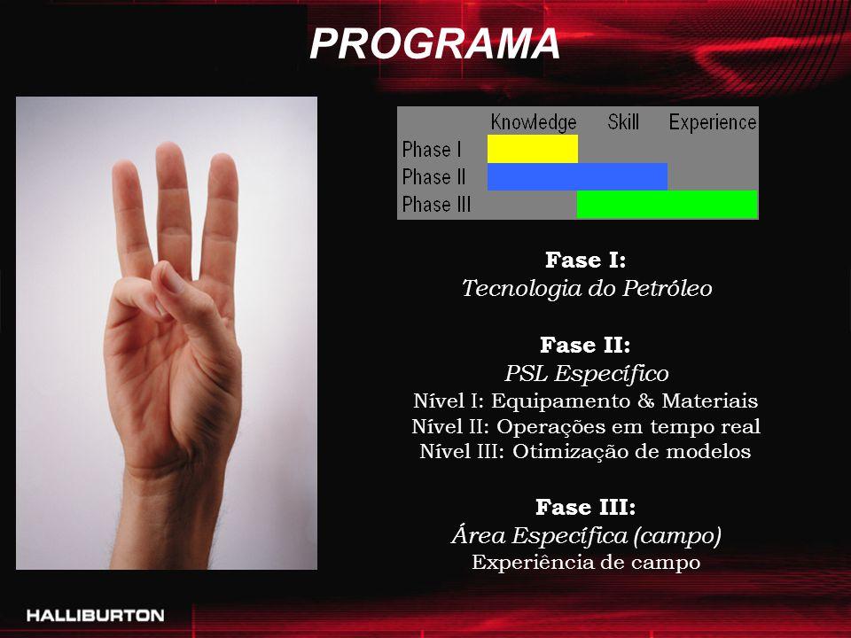PROGRAMA Fase I: Tecnologia do Petróleo Fase II: PSL Específico Nível I: Equipamento & Materiais Nível II: Operações em tempo real Nível III: Otimizaç