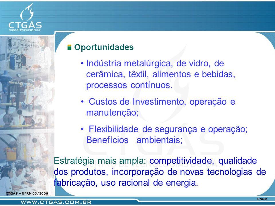 www.ctgas.com.br CTGAS – UFRN 03/2006 PNND Oportunidades Indústria metalúrgica, de vidro, de cerâmica, têxtil, alimentos e bebidas, processos contínuo
