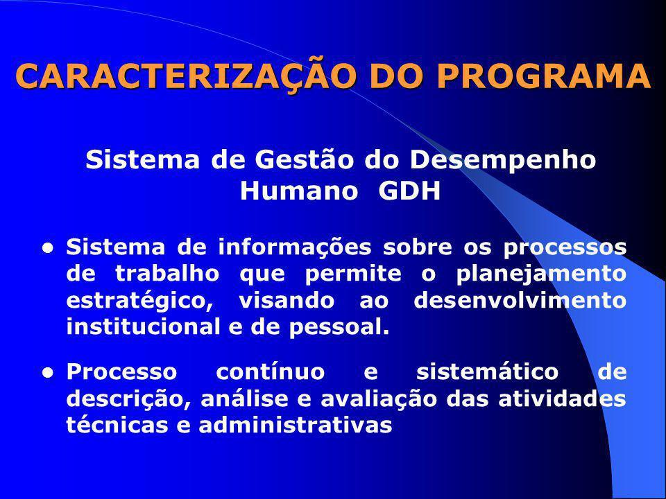 CARACTERIZAÇÃO DO PROGRAMA Sistema de informações sobre os processos de trabalho que permite o planejamento estratégico, visando ao desenvolvimento institucional e de pessoal.