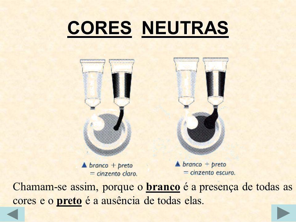 CORES NEUTRAS Chamam-se assim, porque o branco é a presença de todas as cores e o preto é a ausência de todas elas.