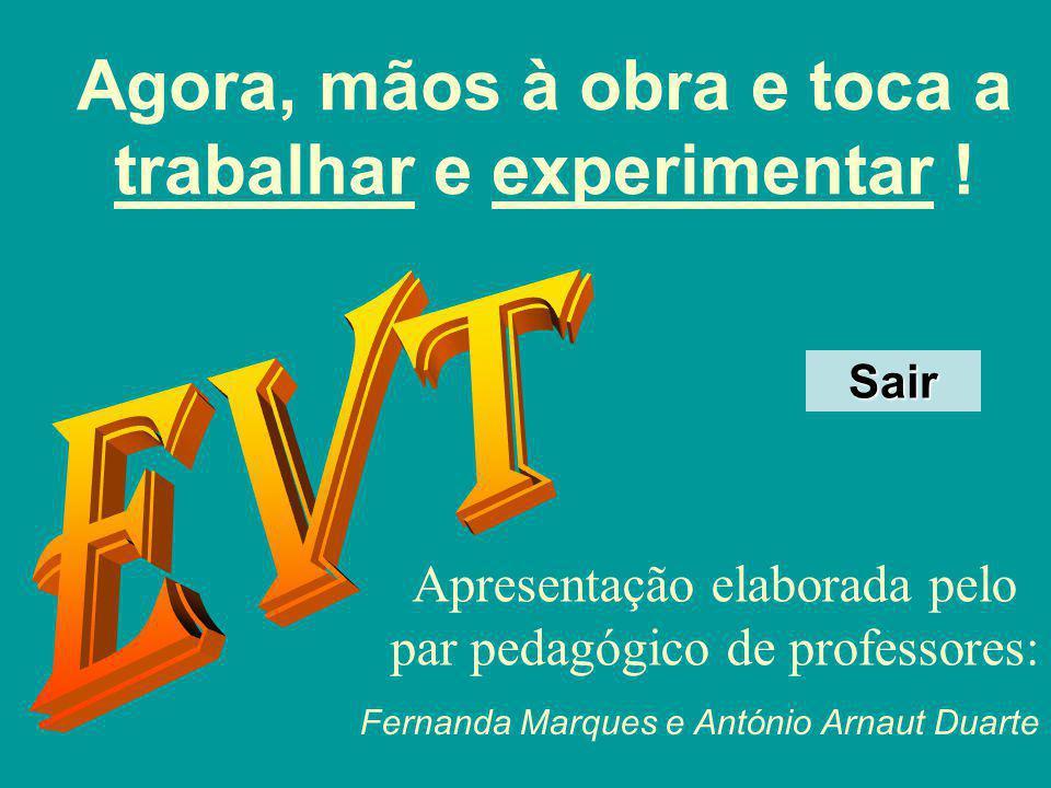 Agora, mãos à obra e toca a trabalhar e experimentar ! Apresentação elaborada pelo par pedagógico de professores: Fernanda Marques e António Arnaut Du