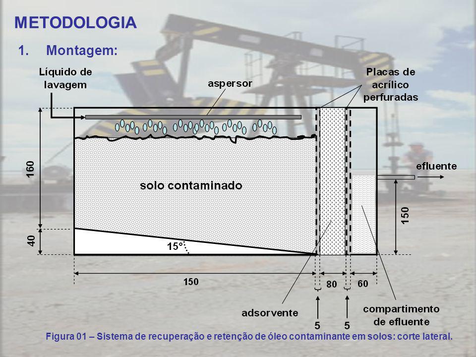 METODOLOGIA 1.Montagem: Figura 01 – Sistema de recuperação e retenção de óleo contaminante em solos: corte lateral.