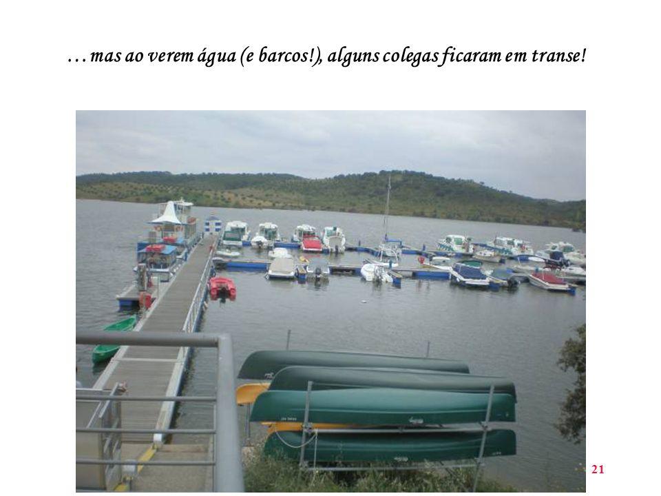 21 …mas ao verem água (e barcos!), alguns colegas ficaram em transe!