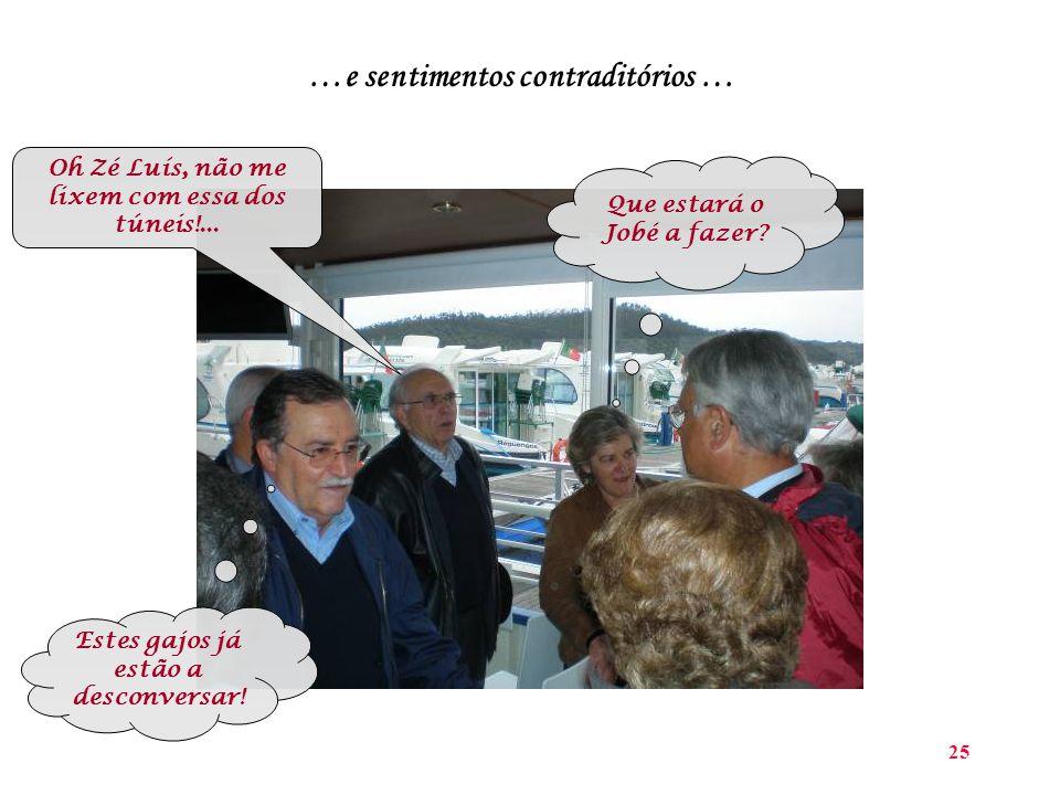 25 …e sentimentos contraditórios … Oh Zé Luís, não me lixem com essa dos túneis!...