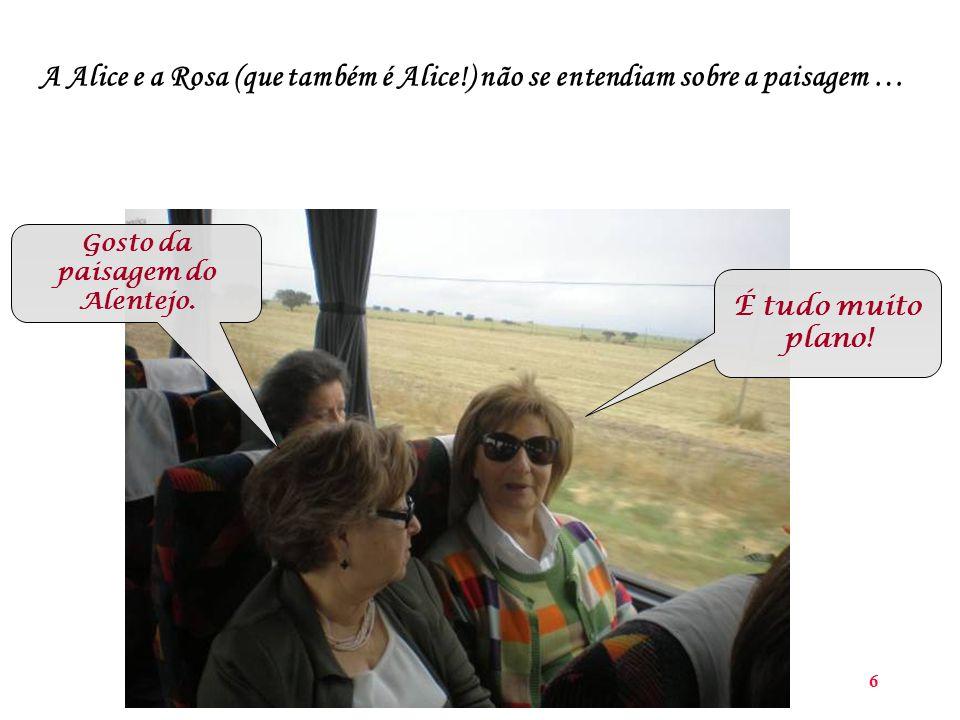 6 A Alice e a Rosa (que também é Alice!) não se entendiam sobre a paisagem … Gosto da paisagem do Alentejo.