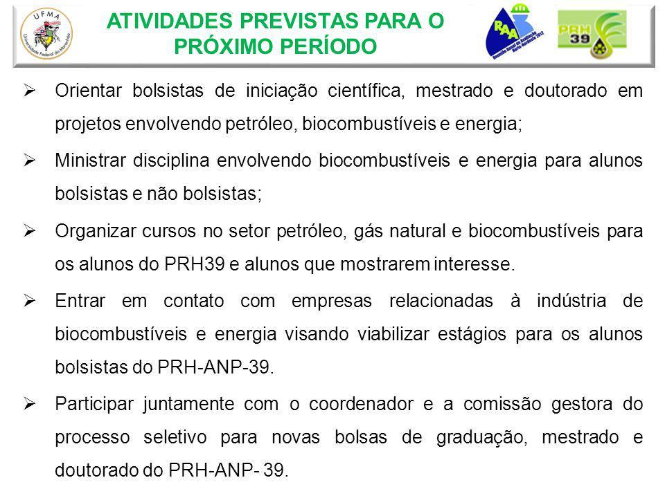 Orientar bolsistas de iniciação científica, mestrado e doutorado em projetos envolvendo petróleo, biocombustíveis e energia; Ministrar disciplina envo